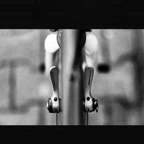 Francescomoser Moser Instafollow Vintagestyle Vintagebikes Bikeshop Bike Cyclist Cycling VSCO Instasize Frame Bikelife