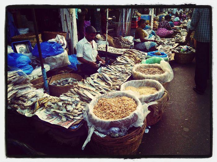 India Market Fish Travel goa