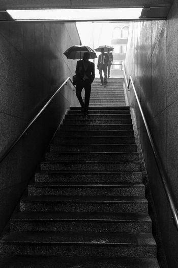 Düsseldorf, Germany Blackandwhite City Life Deutschland Duesseldorf Düsseldorf Germany Low Angle View Moving Down NRW Rain Rainy Days Regenschauer  Regenschirm Schwarzweiß Staircase Stairs Steps Steps And Staircases Umbrella Monochrome Photography Enjoy The New Normal Black And White Friday The Street Photographer - 2018 EyeEm Awards
