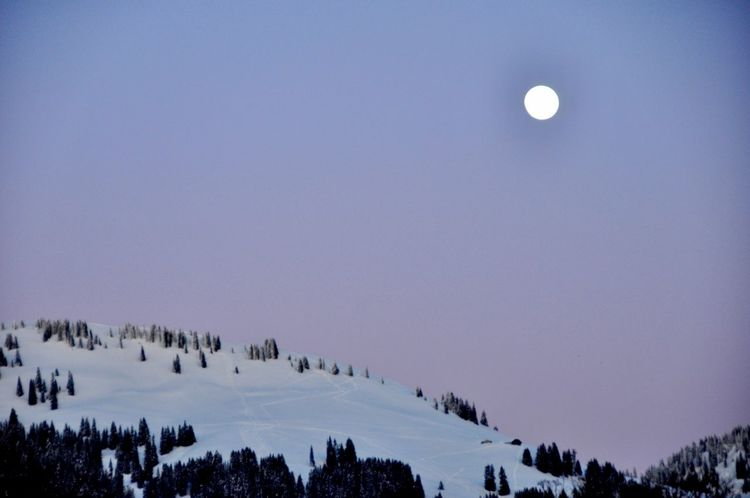 Clear Sky Snow ❄ Astronomy Beauty In Nature Clear Sky Cold Temperature Day Evening Gstaad Landscape Moon Nature No People Outdoors Scenics Sky Snow Tranquil Scene Tranquility Tree Violet Winter