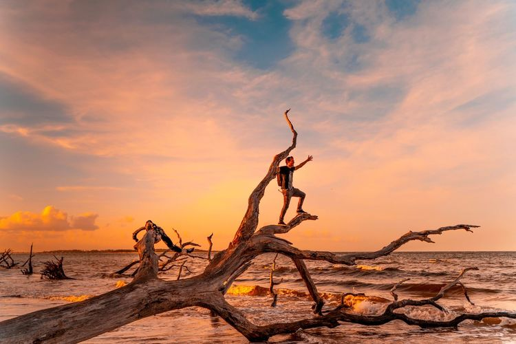 Full length of man standing on driftwood at beach against sky