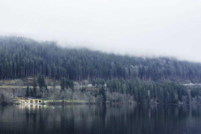 Misty Countryside Foggy Lake Lakeshore Mountain Mystery Outdoors Reflection Riverbank Scenics Standing Water Tranquility Tree Unclear Water Waterfront Weather