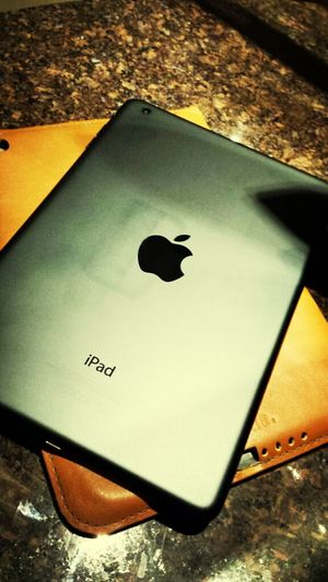 My Toy~ Ipad Mini