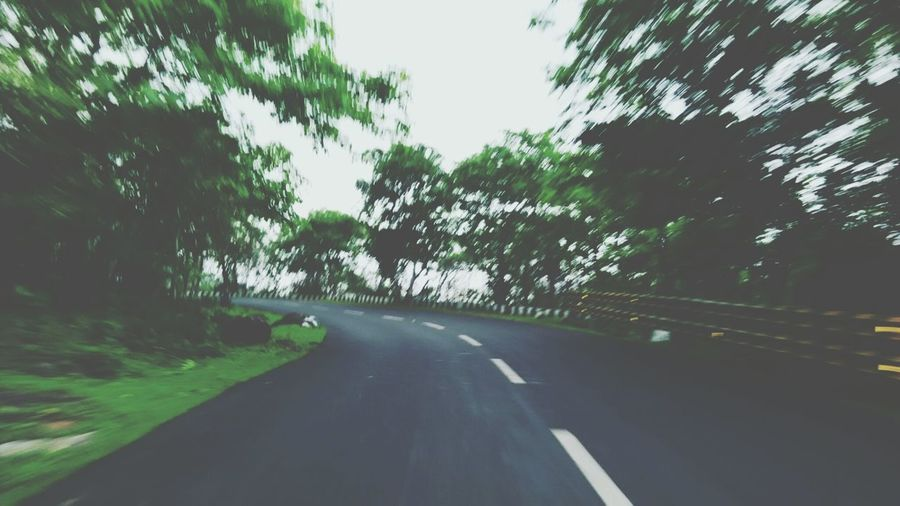 Tree The Way Forward Road Transportation Clear Sky Tranquil Scene Tranquility Diminishing Perspective Growth Nature Non-urban Scene Plant Green Color Outdoors Day Travel Destinations Sky Remote Scenics Countryside First Eyeem Photo