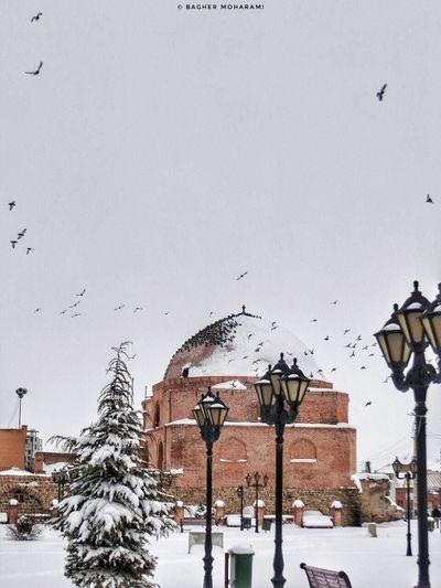 #urmia at snowy day 2017 City Day Iran Iran♥ Nature No People Outdoors Sky Snow Snowyday Urmia Winter ارومیه اورمیه ایران برف زمستان