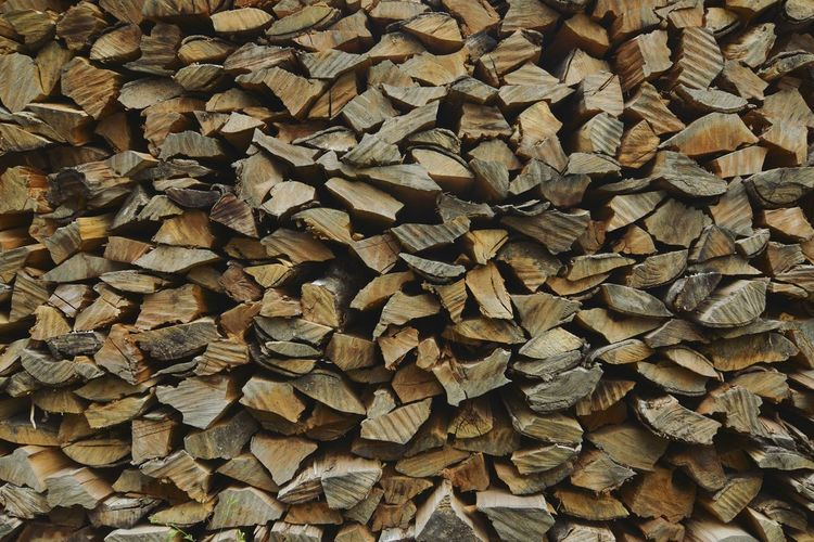 Woodpile Carpenter Wooden Texture Nature Jungle Abstract Desktop Background Wild Fuelwood First Eyeem Photo