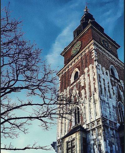 Cracow Mariackichurch Mariacki Church Blue Sky Red Tree Kościół Kościółmariacki Niebieski Niebo Czerwony Drzewo Krakow Day Afternoon Instaphoto