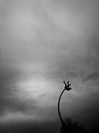Projet 365 : statue d'un sauteur à la perche. 365 Day Challenge Blackandwhite Noir Et Blanc Sky Low Angle View Flying Mid-air Silhouette