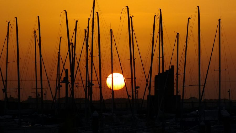 Sunset Silhouette Landscape Tranquil Scene Tranquility Sun Outdoors Growth Beauty In Nature No People Scenics EyeEm Best Shots Tranquility Visual Inspiration EyeEmNewHere Master_shots Masterclass EyeEm Masterclass EyeEm Best Edits Sunset_collection Beauty Boat Marina Sunlight Sunrise The Week On EyeEm Breathing Space