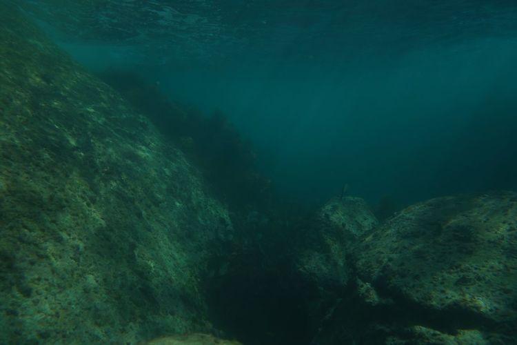 Deep blue green