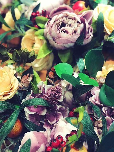 Flowers 💐 Plant Close-up Freshness Flower Beauty In Nature Flowering Plant Nature Rosé Art And Craft Rose - Flower Leaf