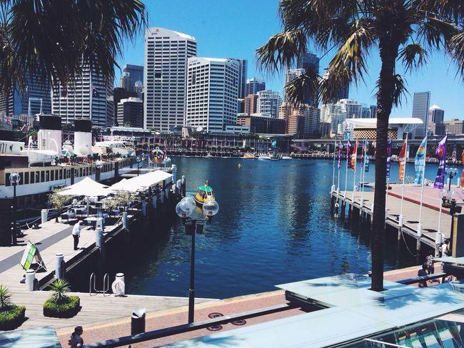 Darling Harbour Restaurant Sydney