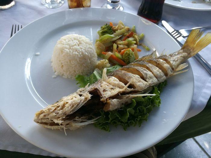 Fgugal Food