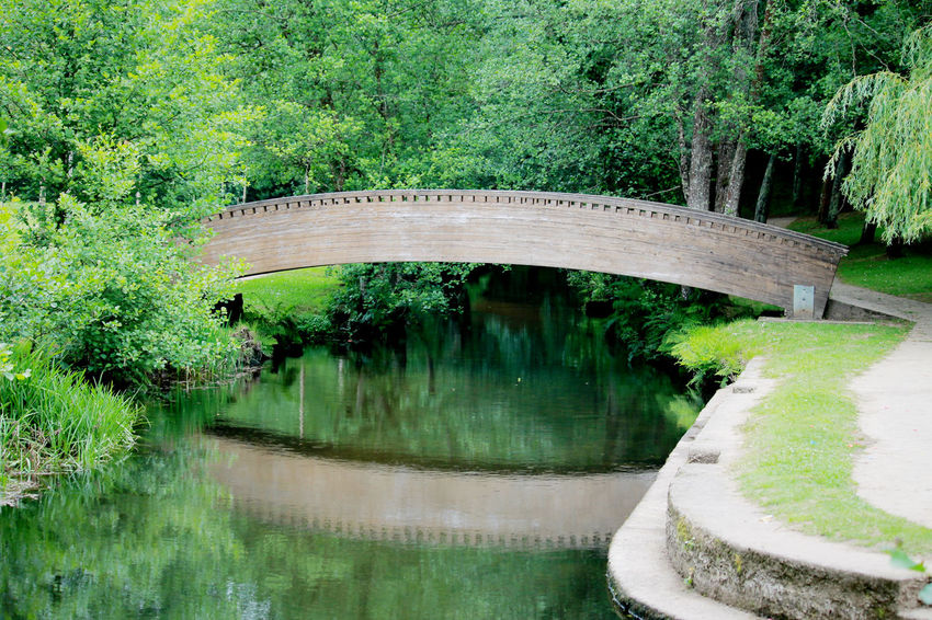Bridge - Man Made Structure Built Structure Green Color Nature Photography Nature_collection Outdoors Plants Collection Reflection River Tranquility Tree Wood Bridge