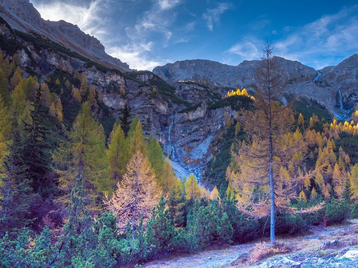 Autumn vibes Autumn Val Müstair Mountain Scenics - Nature Beauty In Nature Sky Plant Mountain Range Cloud - Sky Environment Tranquil Scene Non-urban Scene Tranquility Nature Growth No People Landscape Multi Colored Day Idyllic Land Tree