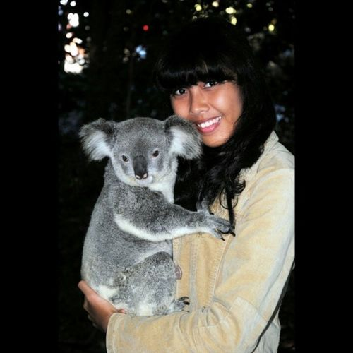 KoalaPine Brisbane Likeforlike Followme finally I can carrying the grey animal hihi.