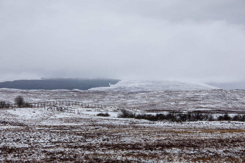 Scotland Tadaa Community Beauty In Nature Blizzard Cloud - Sky Cold Temperature Day Environment Fog Land Landscape Mountain Nature No People Outdoors Plant Scenics - Nature Scottish Highlands Sky Snow Snowing Storm Tranquil Scene Winter