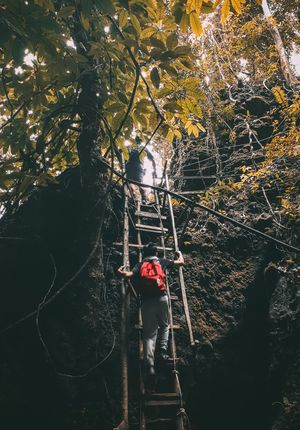 Wildernessculture Visualsoflife Forestlovers Intothewoods Naturephotography Earthoutdoors SamsungGalaxyA52017 Instagram Livefolk First Eyeem Photo FirstEyeEmPic Full Length Hanging Men Sky Rope Bridge Rock Climbing Free Climbing Climbing Wall Safety Harness Extreme Sports Climbing Rope Rock Face Climbing Equipment Jungle Gym Bridge - Man Made Structure