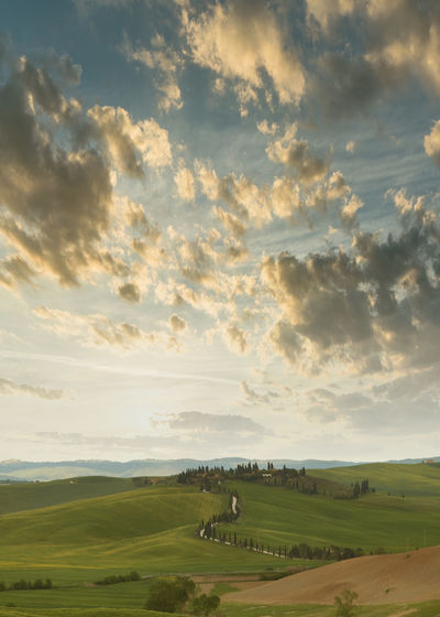 mood Toscana Agriculture Beauty In Nature Cloud - Sky Day Environment Field Grass Green Color Italy Land Landscape Nature No People Non-urban Scene Outdoors Plant Rolling Landscape Rural Scene Scenics - Nature Sky Tranquil Scene Tranquility Tree