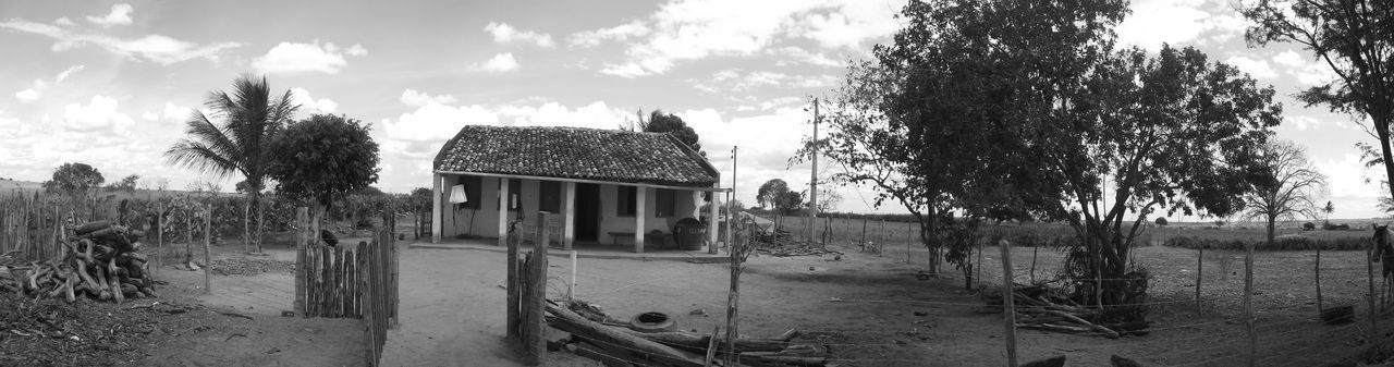 Sertão Bahia/brazil Bahia Brazil Photographer Blackandwhite Photography Black And White Blackandwhite