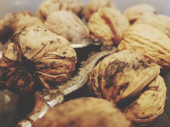 Walnut WalnutCreek Creek EyeEm Selects Healthy Snack