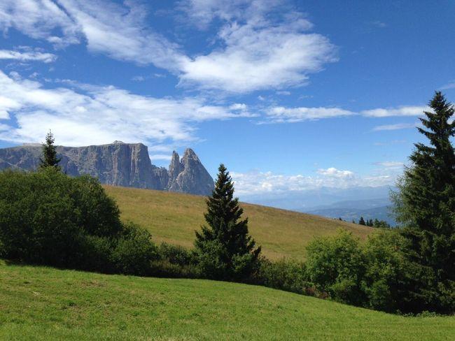 Hiking Nature Südtirol Alm Trekking Südtirol Mountains Nature Hiking Grass Landscape Nature Sky Scenery Green Color Beauty In Nature