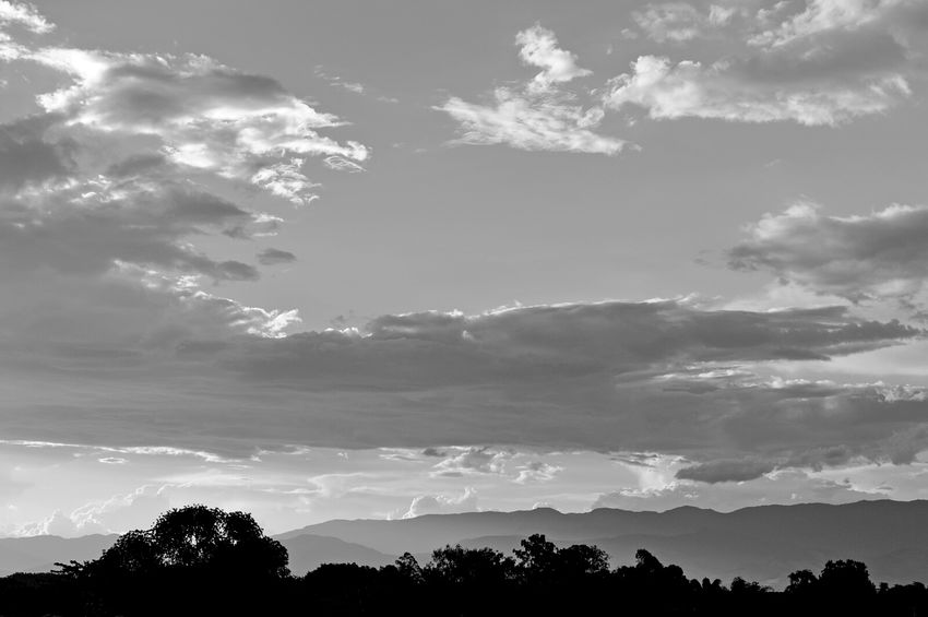Black And White Photography Sky And Clouds Trees Silhouettes Black And White Nature Photography Nature_collection Sky_collection Serra Da Mantiqueira Pindamonhangaba Brazil