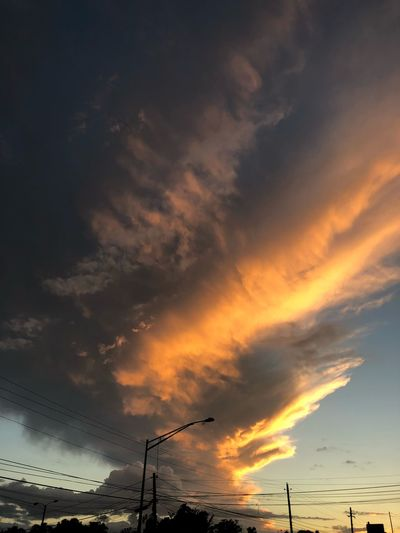 Sky art Puertoricotourism Puertorico Sky Cloud - Sky Sunset Beauty In Nature Scenics - Nature Tranquil Scene Nature Silhouette Bird Orange Color Tranquility Animals In The Wild No People Idyllic Animal Low Angle View Outdoors Non-urban Scene Flying