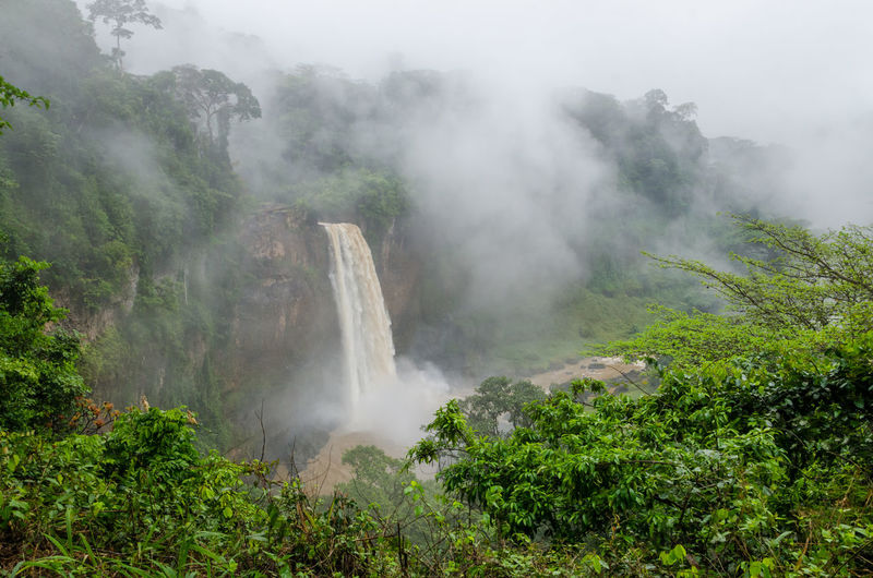 Scenic View Of Ekom Waterfall In Foggy Rainforest Of Cameroon, Africa
