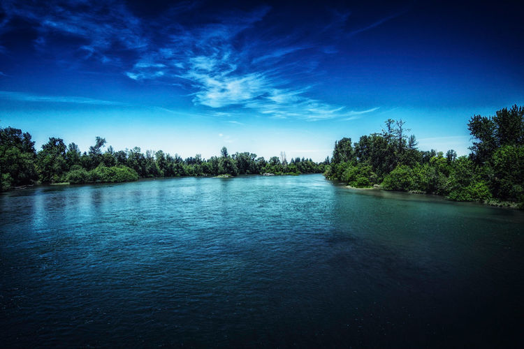 The River Willamette River Oregon Tree Water Blue Clear Sky Sky