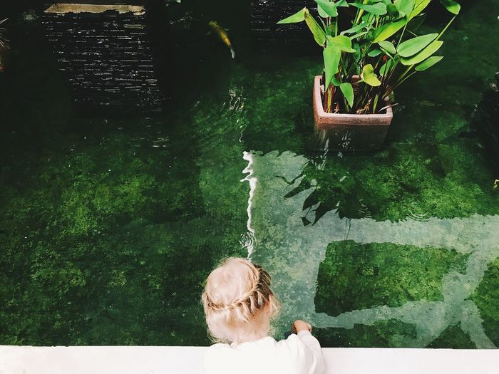 High angle view of woman looking in pond