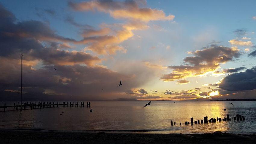 Sunset Sea Beach Water Sun Cloud - Sky Horizon Over Water Silhouette Sky Outdoors Tranquility Summer Nature Sand Multi Colored No People Blue Gold Colored Landscape Sunlight Préverange, Switzerland