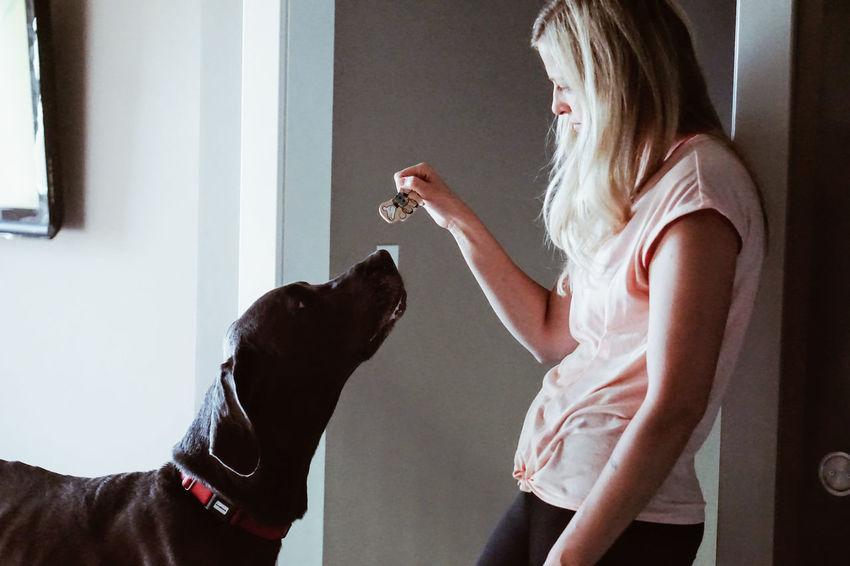 Great Dane EyeEm Selects Girls Pets Window Home Interior