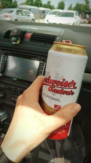 Ceske Budejovice Beer Sunny Day Sunnyday☀️ Cooling  Budweiser