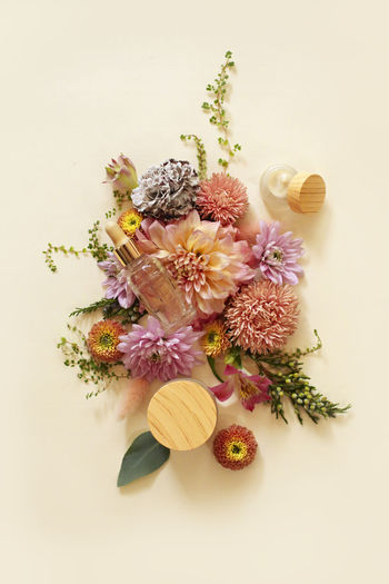 High angle view of flowering plant on table