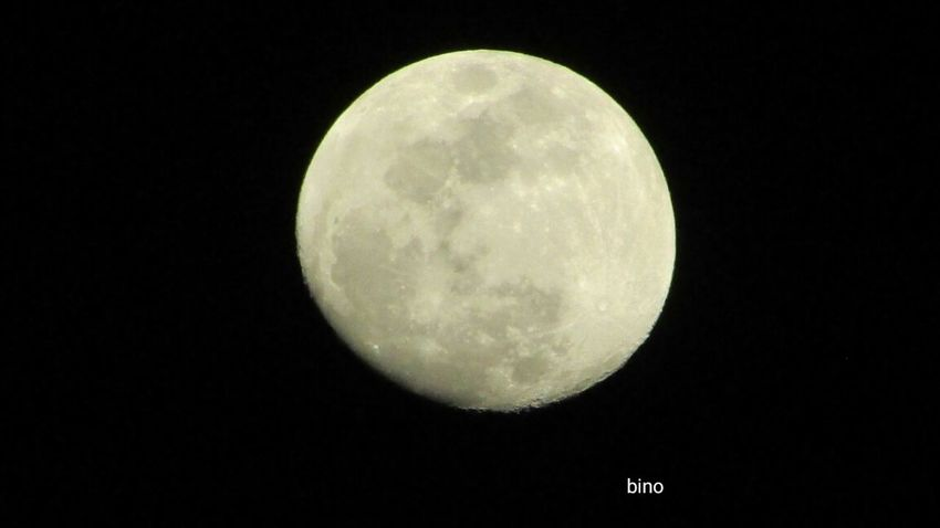 Last Night's Moon Surface Almost Full Looking Up Cadillac Sky Pure Michigan