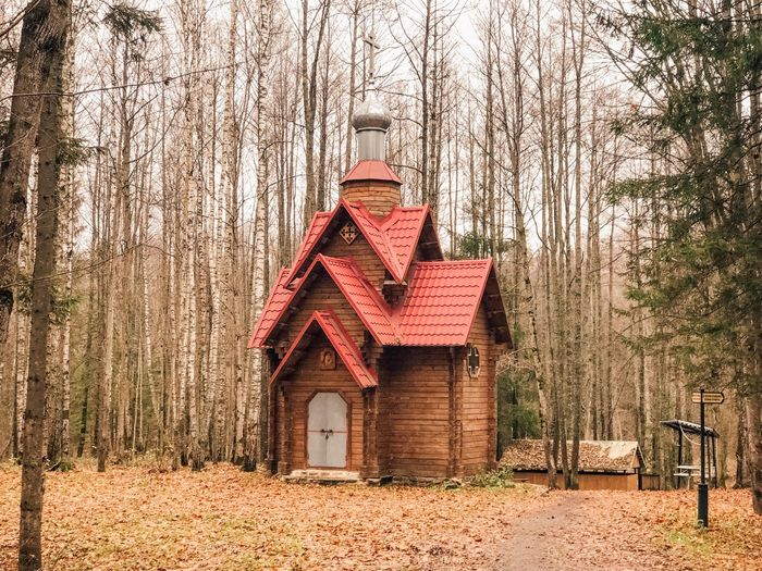 Built Structure Tree Architecture Building Exterior No People Nature Day Auto Post Production Filter Wood - Material Land House Low Angle View Building Sunlight Growth Outdoors Field Plant Hut Park
