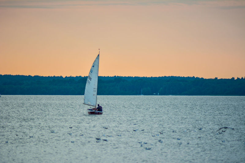 EyeEm Selects Sunset Single Object Direction Outdoors Beach Inspiration No People Sailboat Day Sky Nature