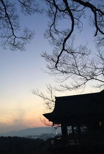 Kiyomizu-dera KiyomizuTemple Temple Mountain Temple Twilight Twilight Sky Sunset Kyoto,japan Kyoto, Japan Shillouette