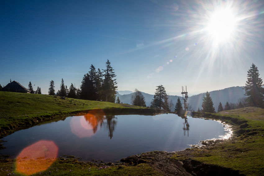 Beauty In Nature Bright Clear Sky Day Lake Lens Flare Nature No People Non-urban Scene Outdoors Plant Reflection Scenics - Nature Sky Sun Sunbeam Sunlight Tranquil Scene Tranquility Tree Water