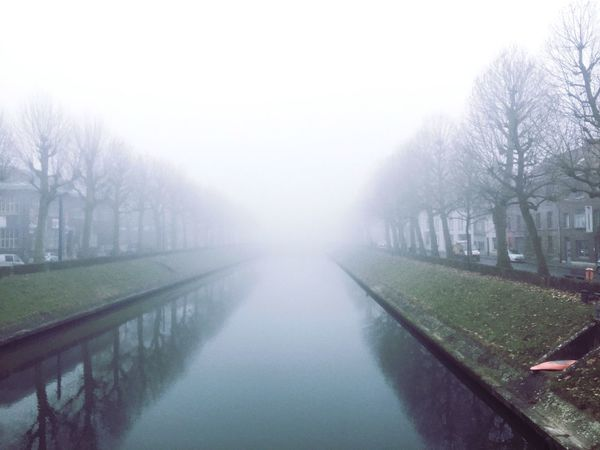 Weather Fog Foggy Gray Bare Tree Winter Mist Scenics Canal Covered Symmetrical 50shadesofgrey Gray Sky