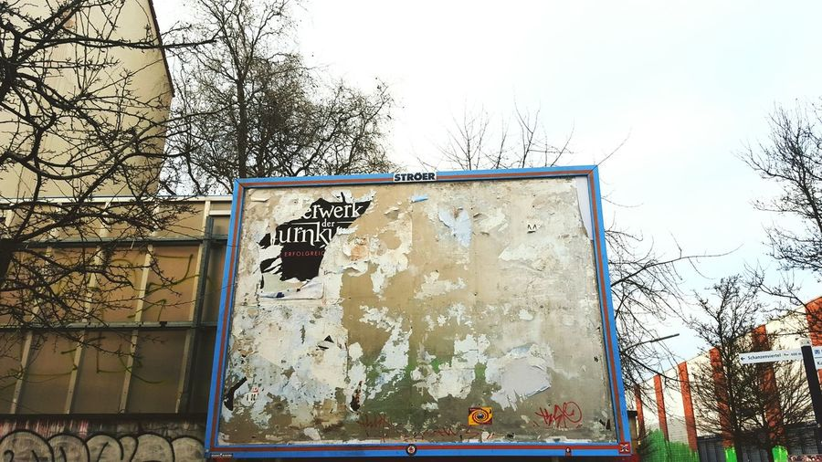 Billboard Advertisement Dirty Rough Trees Ads Adspace Plakat Poster