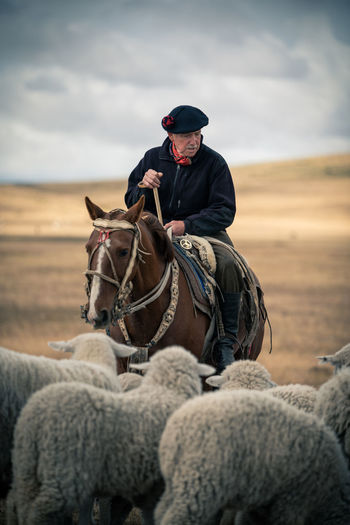 Mature man with sheep riding horse on land