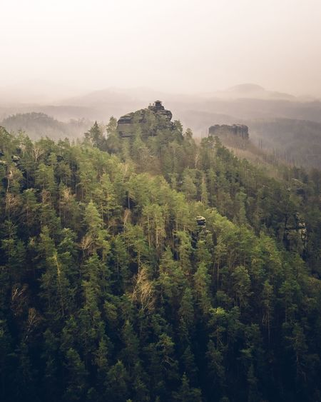 High angle view of forest against sky