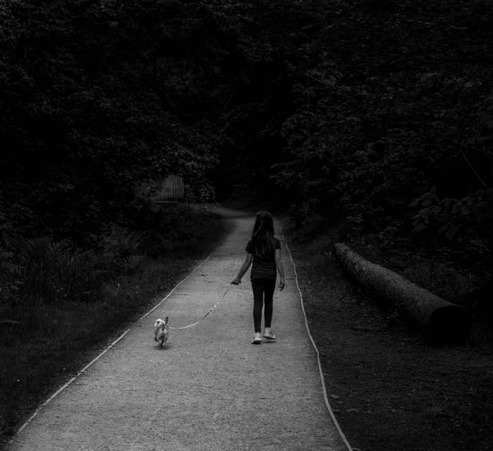 Rear view of girl walking with dog on road