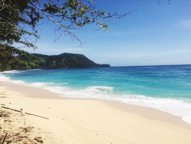 Pal beach