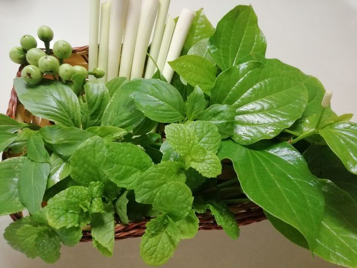 Preparation  Vegetables Green Various Served Leaf Mint Leaf - Culinary Close-up Plant Green Color Food And Drink Basil