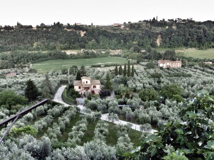 Siena Toskana Italy
