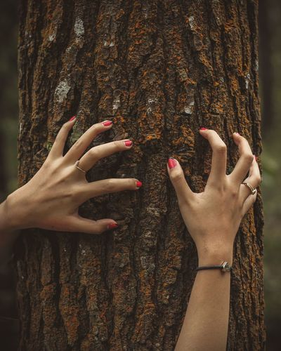 Midsection of woman touching tree trunk against plants