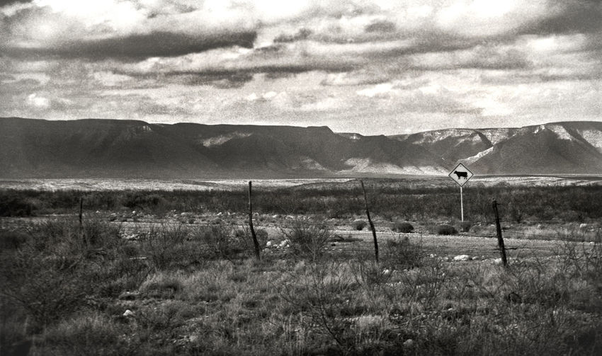35mm Film Desert Livestock New Mexico Ranch Sign Texas Blackandwhite Cattle Cattle Crossing Clouds And Sky Cows Dirt Road Fence Gravel Road Monochrome Mountains Ranching